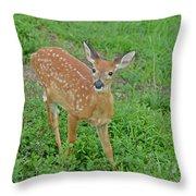 Deer 11 Throw Pillow