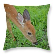 Deer 12 Throw Pillow