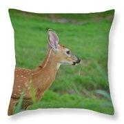Deer 13 Throw Pillow