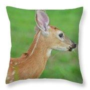 Deer 14 Throw Pillow
