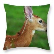 Deer 16 Throw Pillow