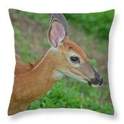 Deer 17 Throw Pillow