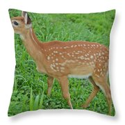 Deer 19 Throw Pillow