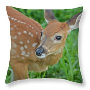 Deer 21 Throw Pillow