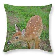 Deer 7 Throw Pillow