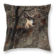 Deer Ahead Throw Pillow