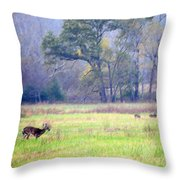 Deer At Cades Cove Throw Pillow
