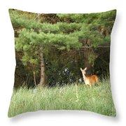 Deer At Dusk V1 Throw Pillow