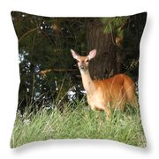 Deer At Dusk V3 Throw Pillow