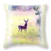 Deer - Buck - White-tailed Throw Pillow