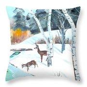 Deer Creek In Winter Throw Pillow