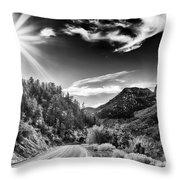 Deer Creek Road Throw Pillow