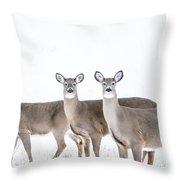 Deer Deer Deer Throw Pillow