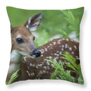 Flora And Fawna Throw Pillow