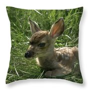 Deer Fawn Throw Pillow