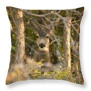 Deer Frame Throw Pillow