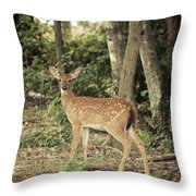 Deer Friend Throw Pillow