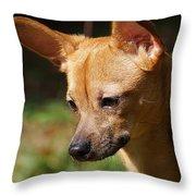 Deer-head Chihuahua Throw Pillow