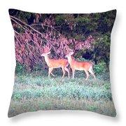 Deer-img-0151-003 Throw Pillow