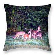 Deer-img-0158-003 Throw Pillow