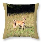 Deer-img-0642-001 Throw Pillow