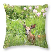 Deer In Magee Marsh Throw Pillow