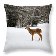 Deer In Road Throw Pillow