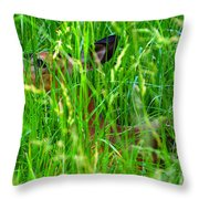 Deer In Tall Grass Throw Pillow