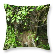 Deer In The Bushes Throw Pillow