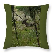 Deer In The Forest Throw Pillow