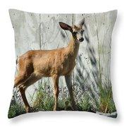 Deer On A Walkabout Throw Pillow