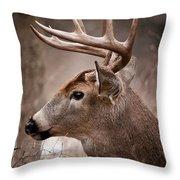 Deer Pictures 491 Throw Pillow