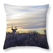Deer Ridge - Sunset Buck Throw Pillow