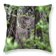 Deer Through The Trees Throw Pillow