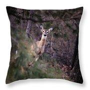 Deer's Stomping Grounds. Throw Pillow