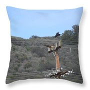 Defending His Territory Throw Pillow