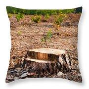 Woods Logging One Stump After Deforestation  Throw Pillow