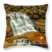 Delaware Falls - Ricketts Glen Throw Pillow