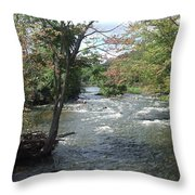 Delhi Rapids From The Bridge Throw Pillow