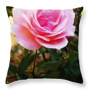 Delicacy Of Life Throw Pillow