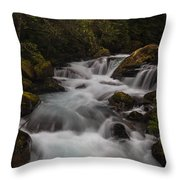 Delicate And Powerful Throw Pillow by Mike Reid
