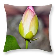 Delicate Bud Throw Pillow