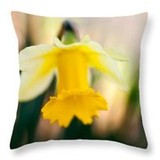 Delicate Daffodil Throw Pillow