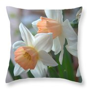Delicate Daffodils  Throw Pillow