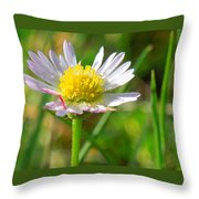 Delicate Daisy In The Wild Throw Pillow