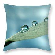 Delicate Drops Throw Pillow