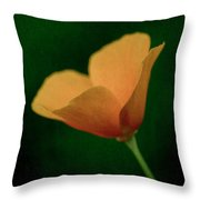 Delicate Edge Throw Pillow