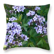 Delicate Flowers 3 Throw Pillow