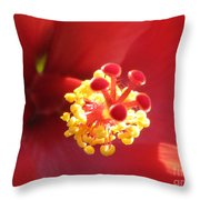 Delicate Hibiscus Throw Pillow
