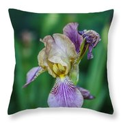 Delicate Iris Throw Pillow